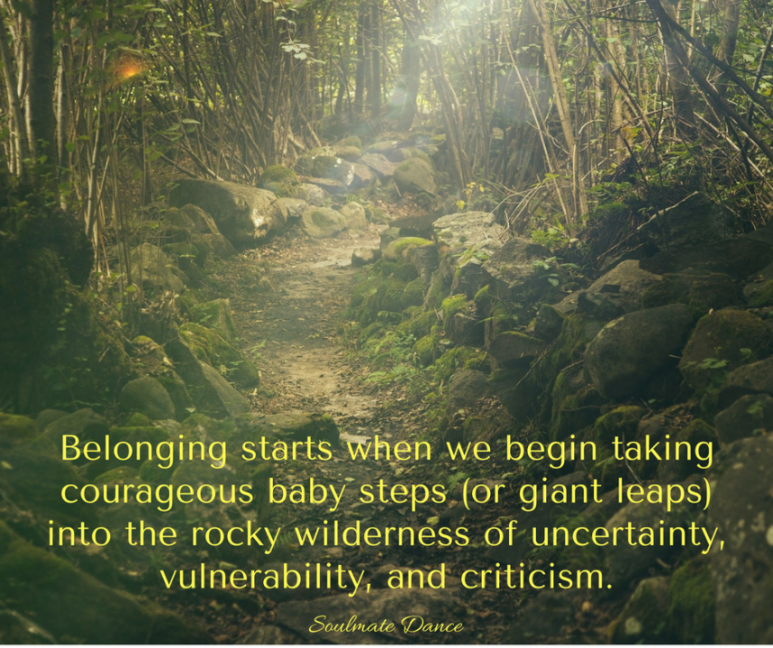 braving the wilderness - brene brown